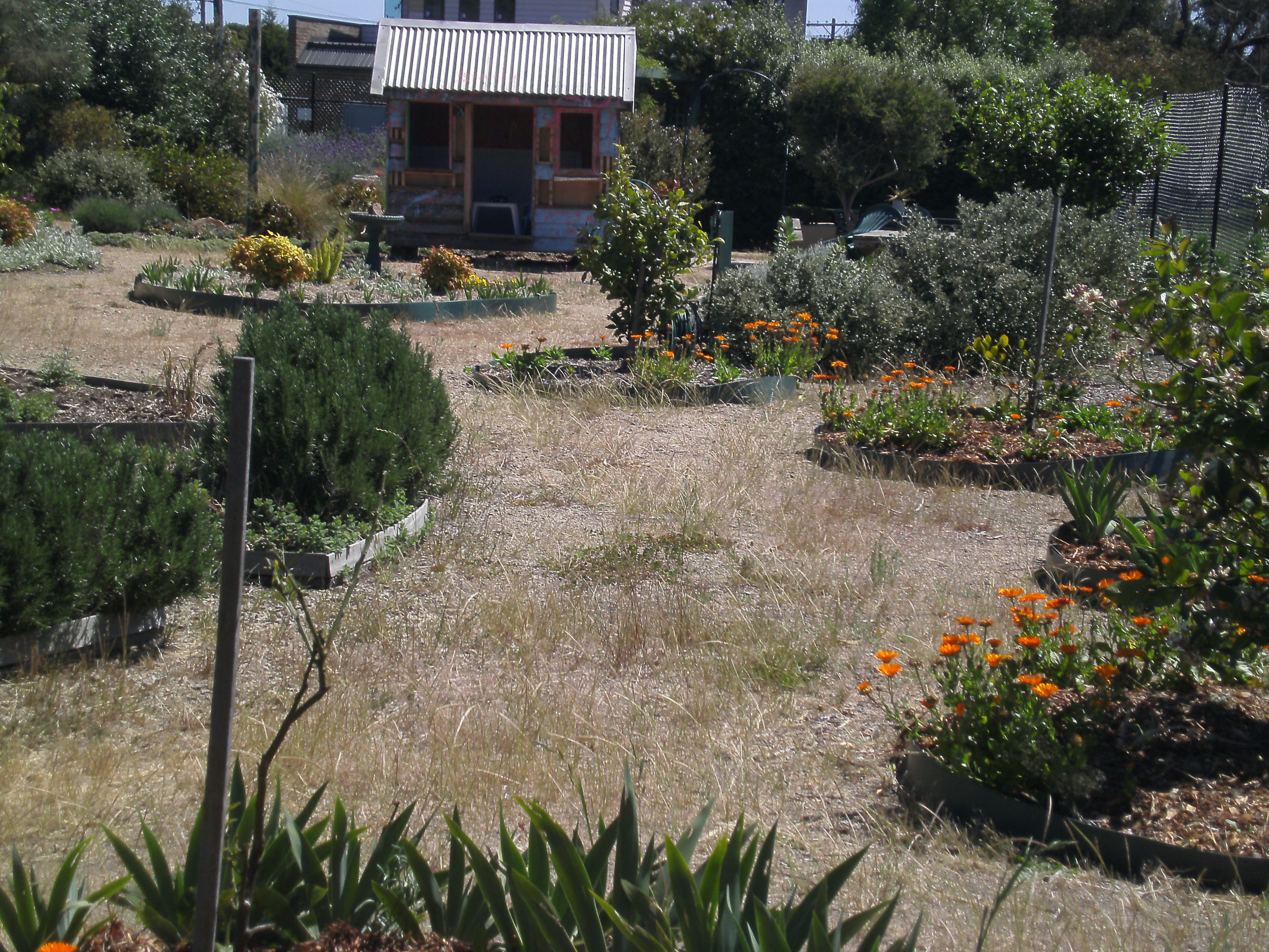 Rosebud Community Garden A Place To Learn Share And Grow