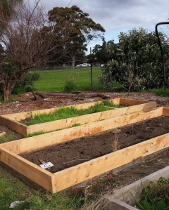 Raised_beds